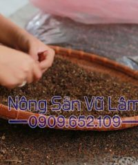 hạt mắc khén được nhặt thủ công, đảm bảo hàng có chất lượng tốt nhất